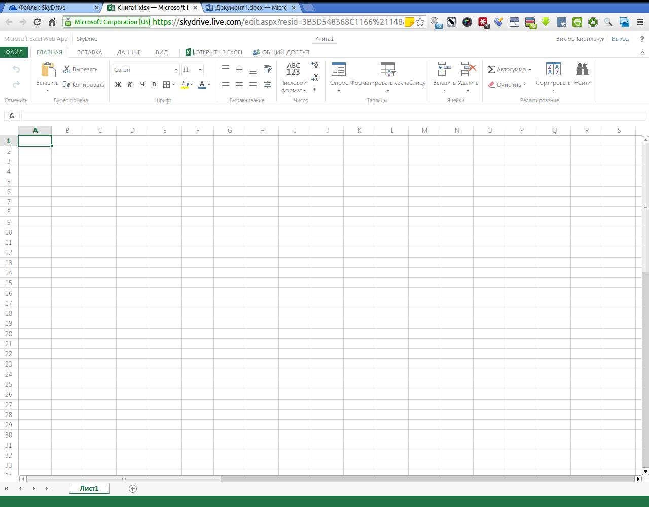 Книга1.xlsx — Microsoft Excel Web App - Google Chrome_116