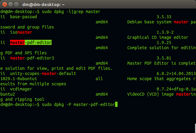 dm@dm-desktop: ~_460