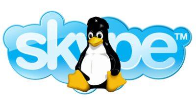 skype linux ubuntu 12.04